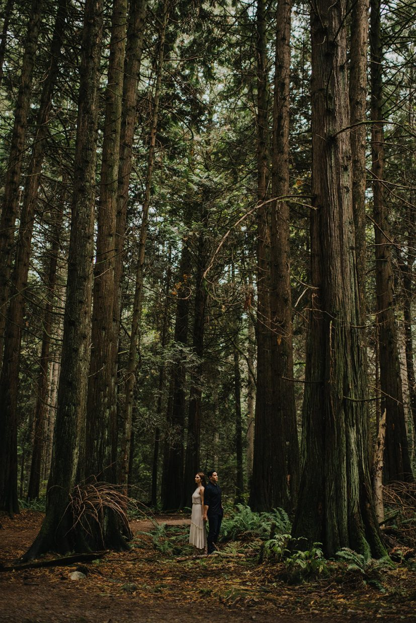 lush vancouver forest engagement