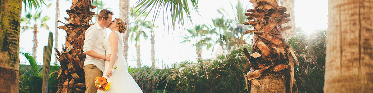 Mexico Wedding in Palm Trees