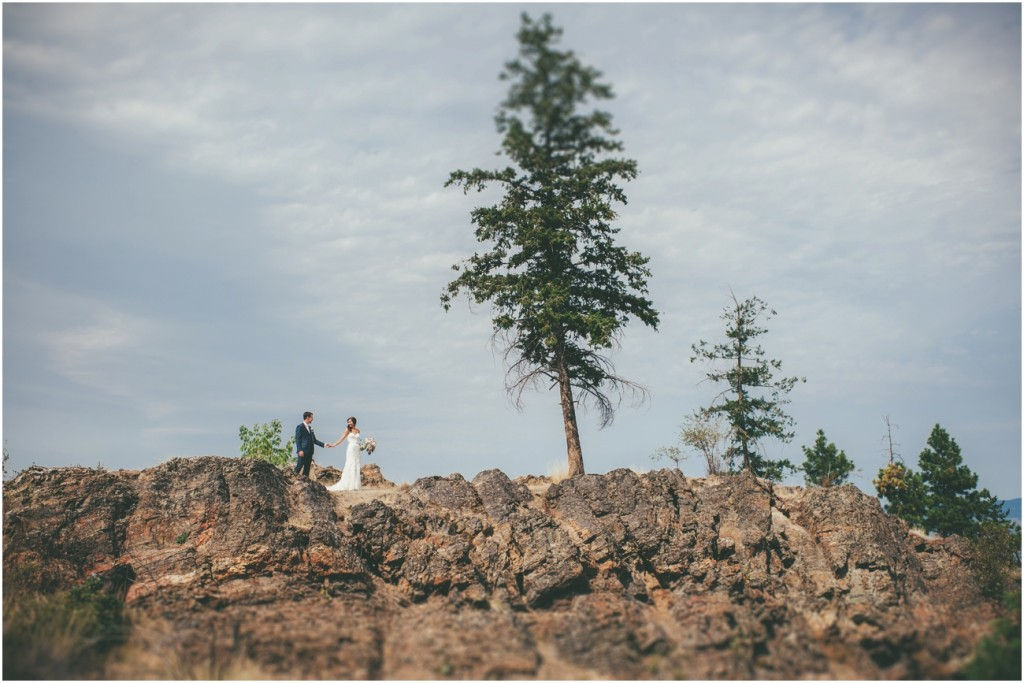 Rock Cliff landscape wedding