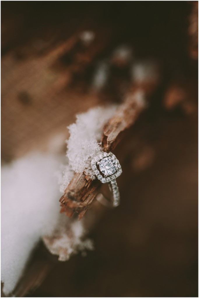 Winter wedding - Engagement Ring