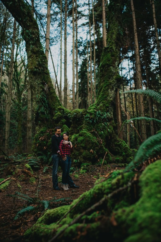 Stanley Park Forest Engagement Photo