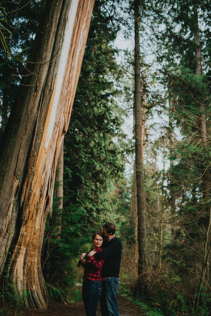 Giant Tree Engagement Photos