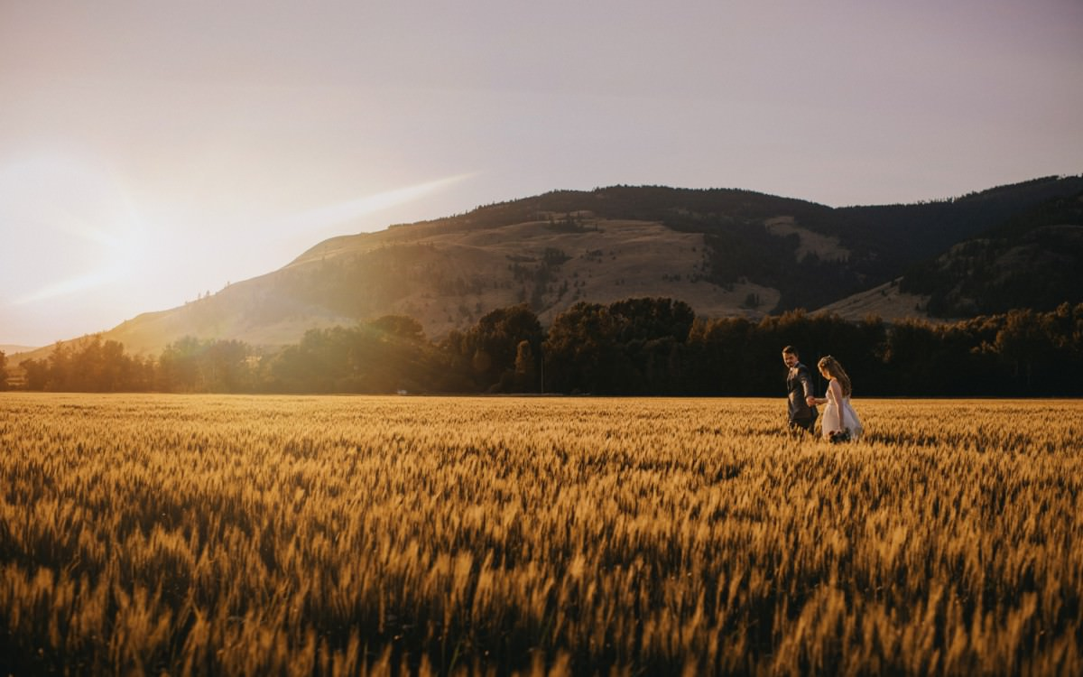 Stunning sunset in wheat field at wedding
