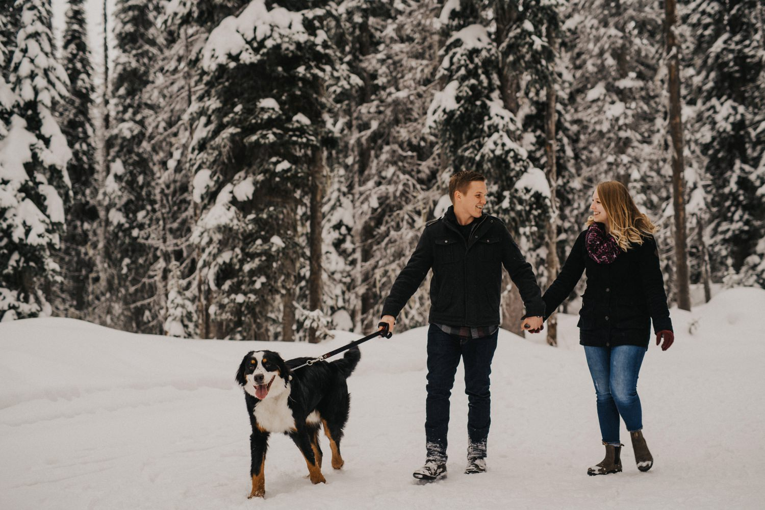 Mountain Dog during engagement session