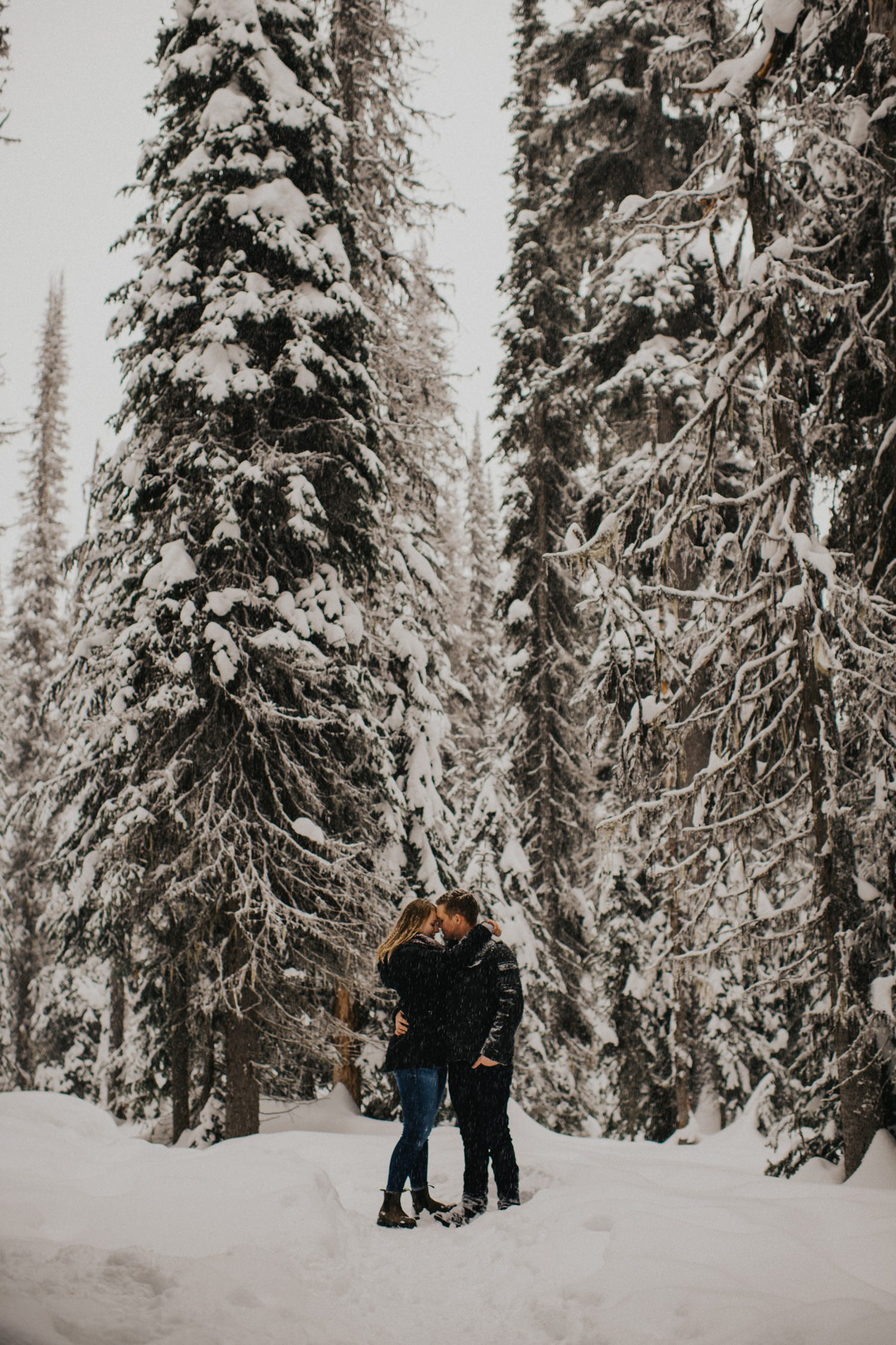 Snowy Forest Engagement - Kelowna Photographer_0031