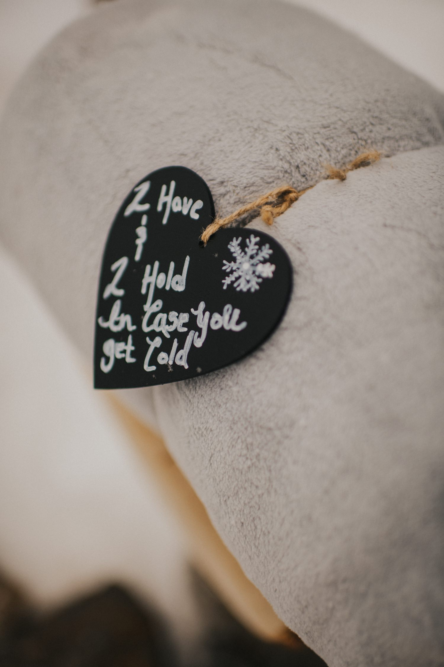 Okanagan Winter Elopement - Joelsview Photography_0047
